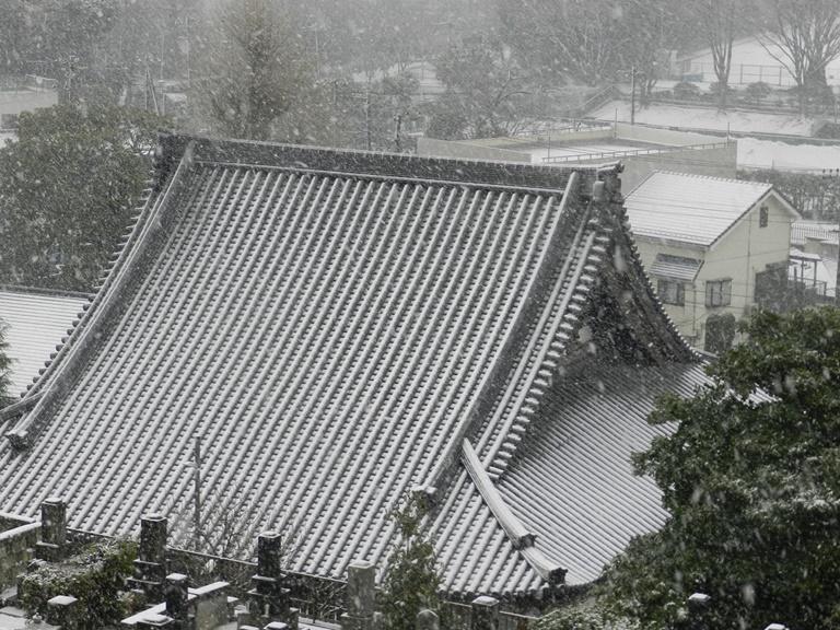 西来寺雪景色